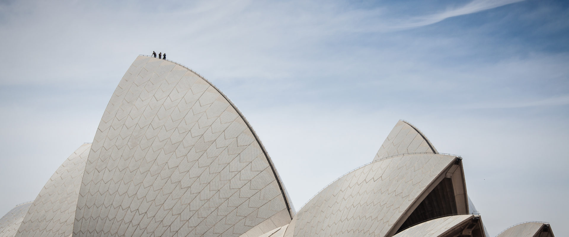 Sydney Director reflects on executive search in Australia Cover Image